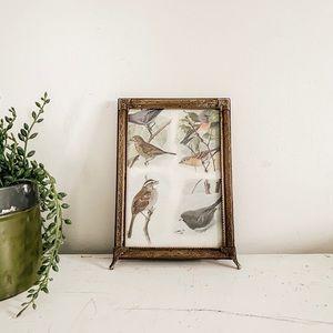 Small bird print